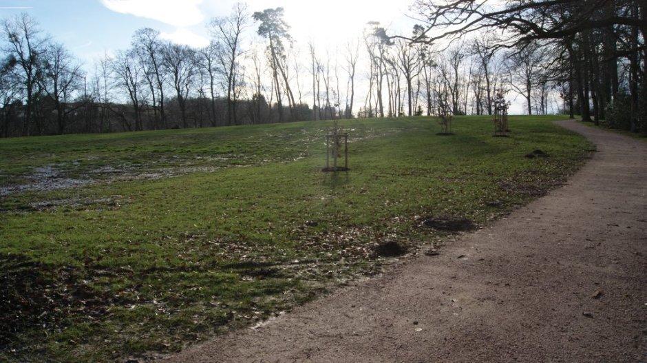 Les travaux avancent au parc animalier du château d'Epinal.
