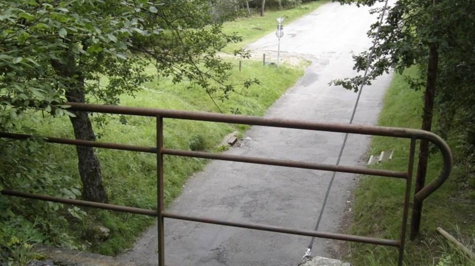 La rambarde du petit pont.