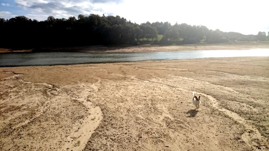 Le lac de Bouzey.
